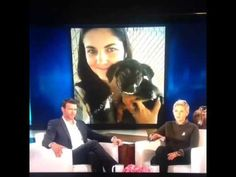 ELLEN'S GREATEST LESSONS-Rescue older dogs, they need homes too! #ellen