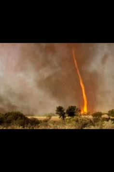 Fire tornado (4-28-13)