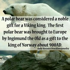 ¤ Bears ¤ Vikings.