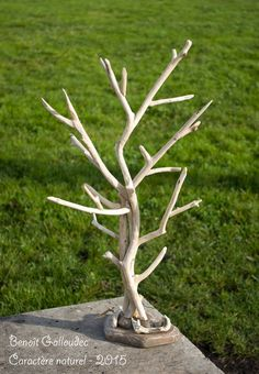 Arbre bijoux en bois flott caract re naturel par beno t galloudec deco chambre pinterest - Arbre a bijoux en bois ...