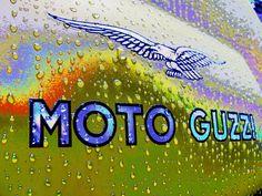 MOTO GUZZI V7 CAFE' CLASSIC Moto Guzzi, Guzzi V7, Letters, History, Classic, Motorbikes, Script Logo, Derby, Historia