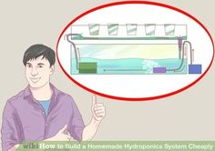 Image titled Build a Homemade Hydroponics System Cheaply Step 4