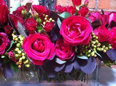 red roses & smokebush.
