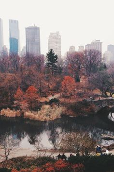 Fall in love with Central Park | Anthony Tulliani on Flickr, December 2013