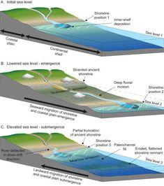 Coastlines of Emergence submergence-marine landforms Continental Shelf, Sea Cave, High Tide, Earth Science, Geology, Geography, Coastal, Waves, Social Studies