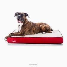 Memory Foam Pet Bed     Buy it now >>>>>   http://amzn.to/1qla3k0
