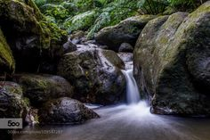 Serene Waters by ohi_its_jeff  blue forest green hawaii hiking long exposure manoa falls river rocks trail travel tree water waterf