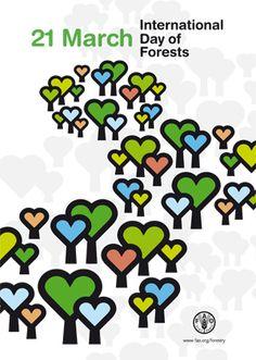 El 21 de març, Dia Internacional dels Boscos
