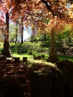 Mount Hope Cemetery in Rochester, New York - This is the location of the gravestones of Susan B. Antony and Frederick Douglass