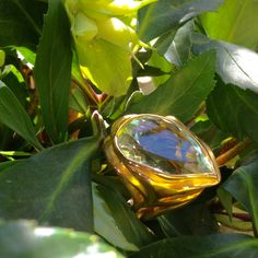 Ring SCHILF VENT VERT -  gold/ prasiolithe -  one of a kind