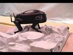 LittleDog - Robot Video. See what the DARPA Little Dogs actually look like as they crawl around. Just like in my latest techno-thriller, 404, where the robots do more than crawl. http://amzn.com/B00P8EDHW6