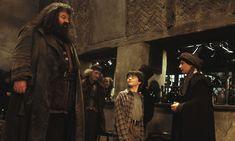 Harry Potter y la Cámara Secreta - Hagrid lleva a Harry al Callejón Diagon donde conoce a el profesor Quirrell