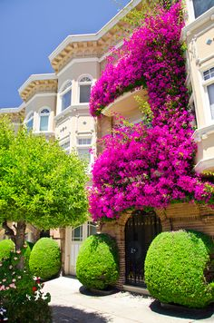 would love to live there - the beautiful colours!!.