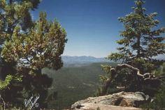 Camping on the Mogollon Rim, White Mountains, Arizona