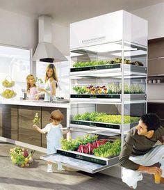 free-standing-modern-kitchen-shelves-indoor-garden