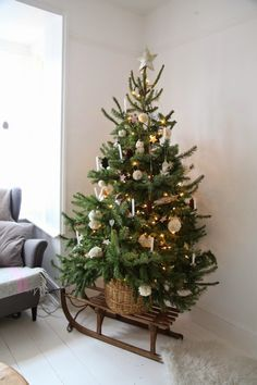 Christmas Tree and wooden little sleigh / Albero di Natale e Slittino di legno