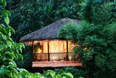 accommodations wayanad log hut