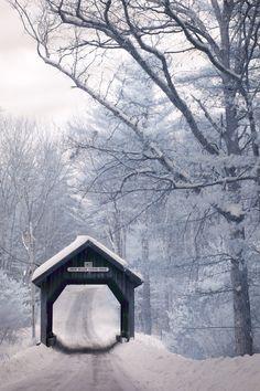 【道 路 Way】  drxgonfly:  Swamp Meadow Covered Bridge [infrared] (by jcbwalsh)