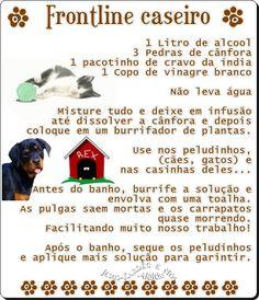 carinho com os pets. Baby Dogs, Pet Dogs, Dog Cat, Love Pet, I Love Dogs, Animal Fashion, Diy Stuffed Animals, Pet Shop, Dog Life