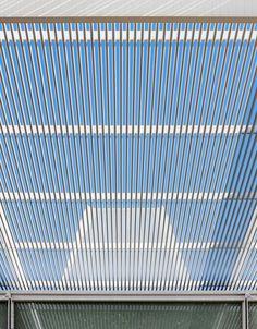 Brochstein Pavilion at Rice University in Houston by Thomas Phifer