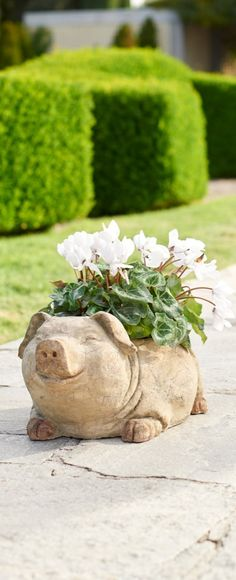 Add our chic pig planter to your patio and prepare yourself for squeals of delight.