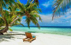 Plaża, Palmy, Leżak, Ocean, Wakacje