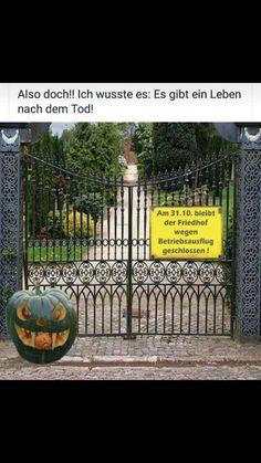 Halloween Spruch: Ich Bin Der Kürbisgeist