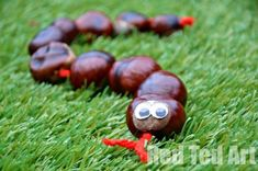 Red Ted Art's Conker Snakes. One of my favourite Conker Crafts (Buckeye's in the US) - Conker Snakes - they are fun to make, great for fine motor threading skills, can be played with or used for counting 1-10.. as well as practicing Number Bonds #Chestnuts #preschool #maths #ece #naturecrafts #counting Autumn Crafts, Fall Crafts For Kids, Autumn Art, Nature Crafts, Toddler Crafts, Crafts To Do, Kids Crafts, Art For Kids, Easy Crafts