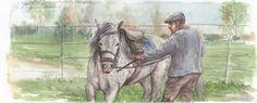 Il mio maestro dice che non esiste un tempo buono ed uno cattivo per andare a cavallo. Non esiste troppo freddo, troppo vento, troppo sole, troppa stanchezza, perché non esiste niente che può ferm…