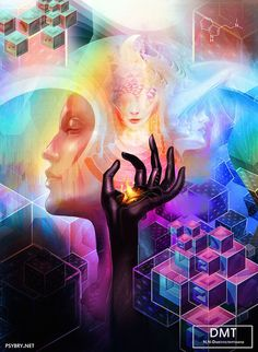 What would be a good outline for an argumentative essay on the legalization of medical psychedelics?