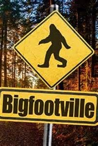 Bigfootville - Movie Review - Thanks to my recent subscription to Amazon Prime, I finally get to watch some long overdue bigfoot documentaries and movies. I know some of you may not like the fact that we do movie and book reviews, but it can be important in pointing people to films or book with good information or at least worth the price of admission. With that said, last night I watched Bigfootville. This is a straight forward bigfoot documentary with witness interviews, skeptic voices…