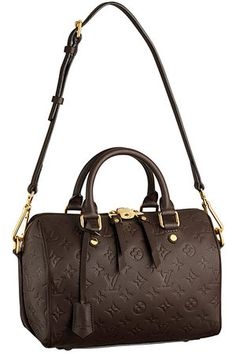 Louis Vuitton Speedy Bandoulière 25 Bag Profile Photo