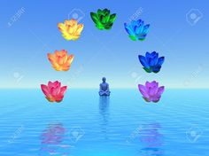 Man In Meditation Surrounded With Colorful Lotus As Chakras,.. Stock Photo, Picture And Royalty Free Image. Image 14637413.