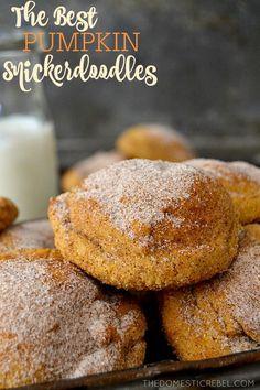 The Best Soft & Chewy Pumpkin Snickerdoodles