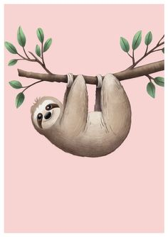 Who doesn't Love a Sleepy Sloth? Cute Sloth Pictures, Sloth Cartoon, Sloth Drawing, Cute Baby Sloths, Baby Animals, Cute Animals, Cute Illustration, Spirit Animal, Animal Drawings