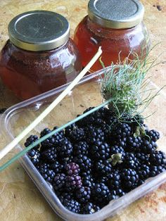 Blackberry mead - make your own! It is easier than you think, and satisfying to drink. Get your berries, honey, and read on for how to do it in your own kitchen. recipe for beginners Brewing Recipes, Homebrew Recipes, Beer Brewing, Home Brewing, Alcohol Recipes, Wine Recipes, Whiskey Recipes, Drinks Alcohol, Coffee Recipes