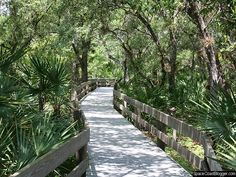 Erna Nixon Hammock Park in Melbourne, FL- does an annual moonlight stroll (last year it was in late Jan, but in the past it's been in Sept or Nov) the stroll boasts live music along the board walks and star gazers complete with telescopes, tasty snacks and the occasional firefly flying by