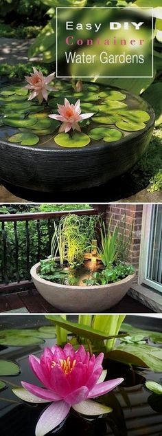 If you have a small garden, or simply don't want to go to all the work of digging out an in ground water feature, DIY container water gardens are an easy and fun project. You can create a simple…MoreMore #WaterGarden