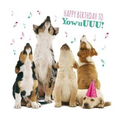 Dog Greeting Cards - 4. HOWLING PUPS