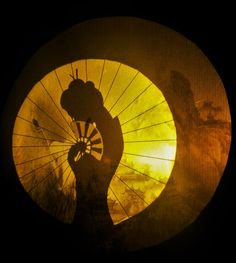 A shadow scene from the MWS performance called The Sea Of Trees Shadow Theater, Light And Shadow, Trees, Scene, Shadow Play, Tree Structure, Stage, Plant