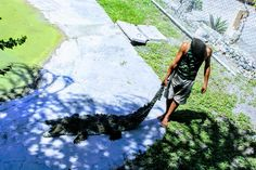 www.tropicalcubanholiday.com Crocodile Vacation Cuba Excursion Apartment Vacation Cuba, Crocodile, Tours, Beautiful, Crocodiles