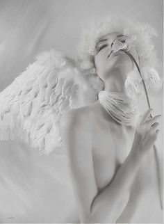 Thorns and stings and those such things just make stronger our angel wings. Angels Among Us, Angels And Demons, Pure White, Black And White, White Light, Foto Fantasy, Blanco White, Ange Demon, White Angel
