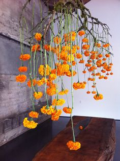 Most Beautiful Orange and Yellow Flowers - Dekoration - Blumen Arte Floral, Deco Floral, Floral Design, Yellow Wedding Flowers, Orange Flowers, Faux Flowers, Ikebana, Types Of Oranges, Hanging Centerpiece