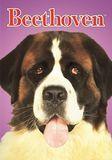 Beethoven [DVD] [1992]