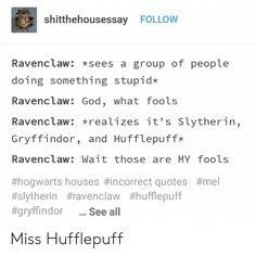 Harry Potter Puns, Slytherin Harry Potter, Harry Potter Universal, Hufflepuff Pride, Hogwarts Founders, Fandoms, Hogwarts Houses, Drarry, Fantastic Beasts
