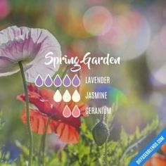 Spring Garden - Essential Oil Diffuser Blend by lenora