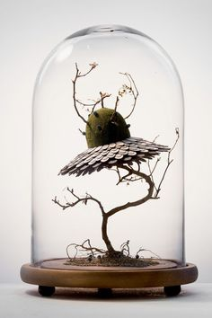 """In her ongoing sculptural series titled """"The Marriage,"""" Malaysian artist Noreen Loh Hui Miun merges elements from real and fictional plantlife to create entirely new species. The fragile works begin with dried plant components like branches and moss. Mixed Media Sculpture, Sculpture Art, Cloche Decor, Colossal Art, The Bell Jar, Glass Domes, Motion Design, Mixed Media Art, Diorama"""