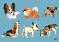 little dogs, Chorkung * Drawing Cartoon Faces, Cartoon Dog, Cat Drawing, Dog Cartoons, Dog Illustration, Illustrations, Shiloh Dog, Dog Books, Character Design Animation