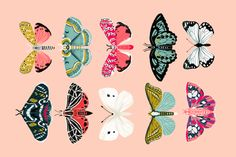 tea towel // moths lepidoptery butterflies cute girls pink vintage botanicals fabric by andrea_lauren on Spoonflower - custom fabric