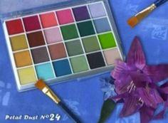 Palette da 24 colori alimentari compatti
